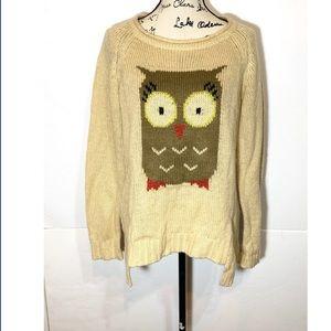 Democracy Owl Sweater